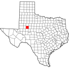 NAIP Aerial Imagery - 2006-2011 - Howard County - TX - USA