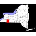 USGS TOPO 24K Maps  - Allegany County - NY - USA